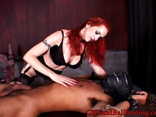 Curvy dame giving will not hear of guy handjob in advance busting his balls in femdom coitus